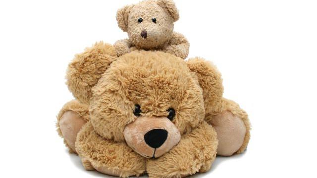 foto_teddy_bear