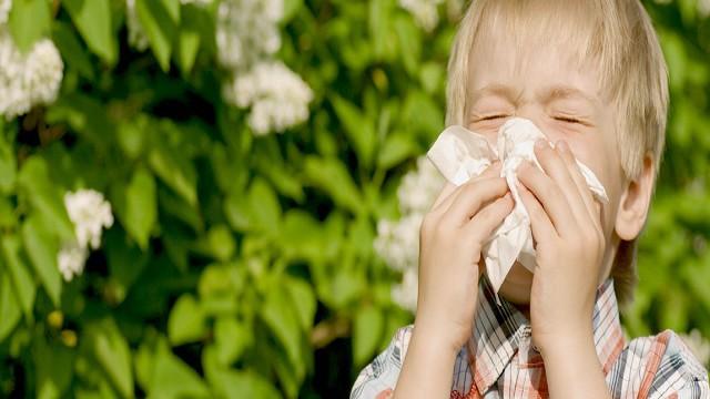 foto_allergia