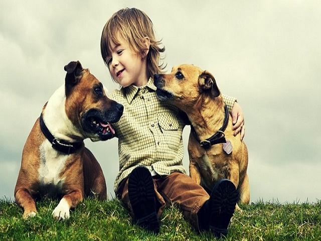 foto tenere di animali