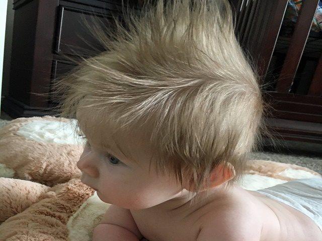 foto_bambino_tanti_capelli