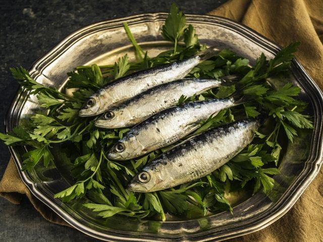 pesci in gravidanza