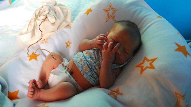 foto_lotus_birth