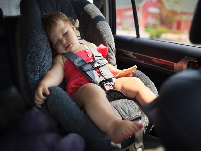 viaggi in auto