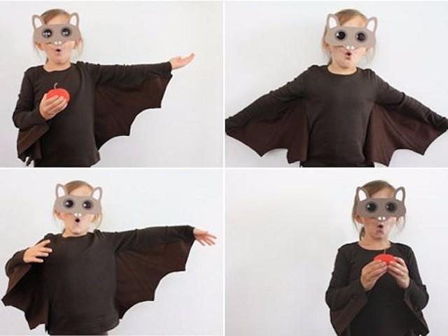 Pipistrello fai da te