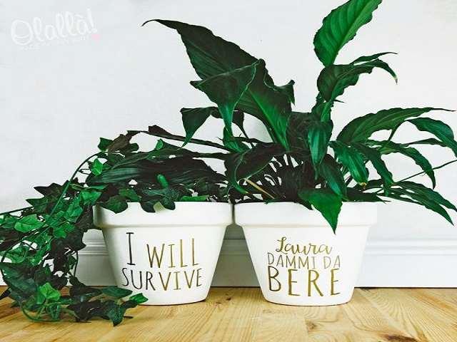 pianta personalizzata