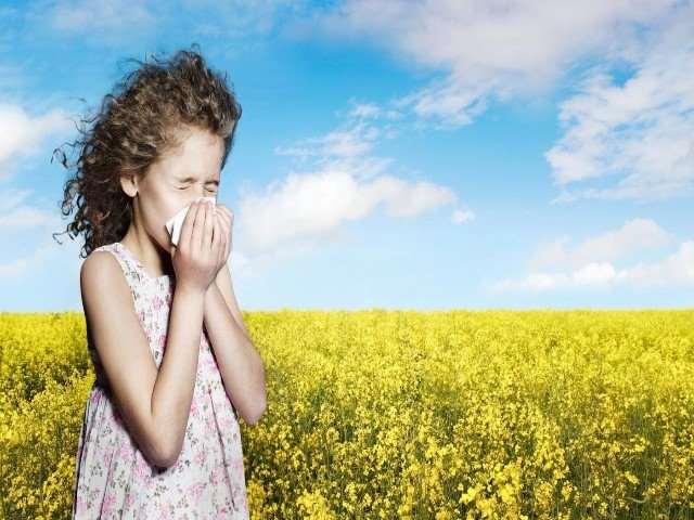 Rimedi allergia
