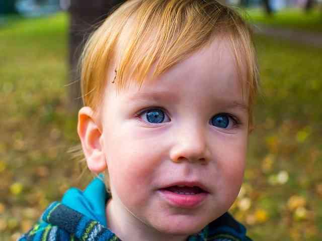bambino biondo occhi blu