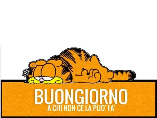 foto buongiorno amici Garfield