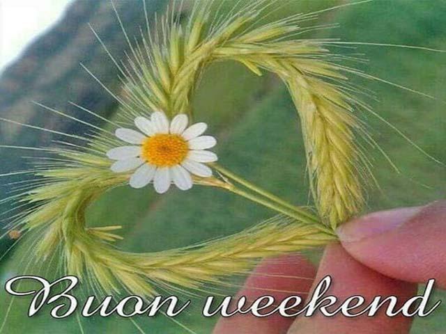 Foto immagini buon weekend
