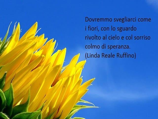Foto fiori frasi