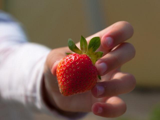estate bambini frutta