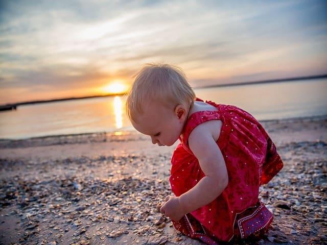 foto spiaggia conchiglie