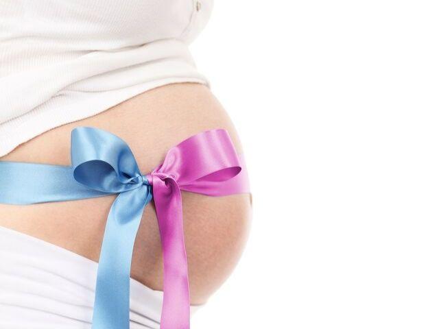 gravidanza 14 settimane