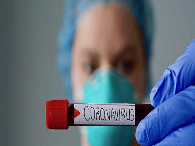 foto_coronavirus