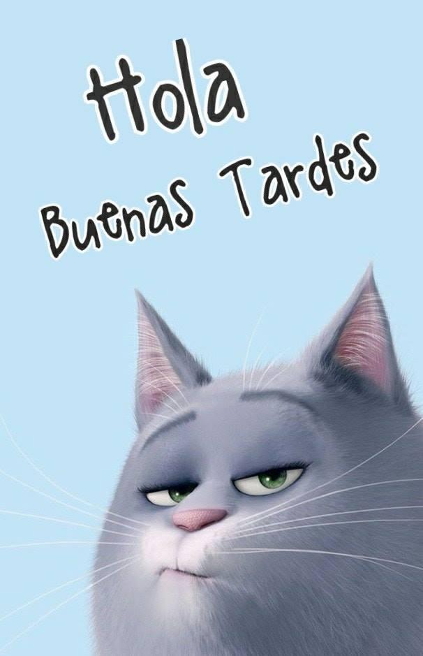 buon pomeriggio in spagnolo
