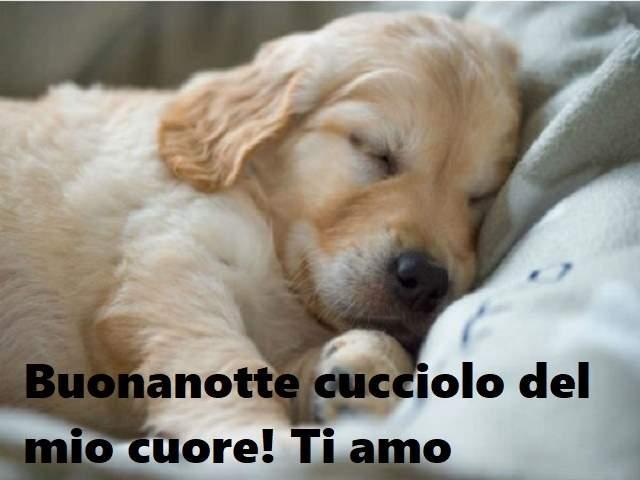 frasi d'amore buonanotte