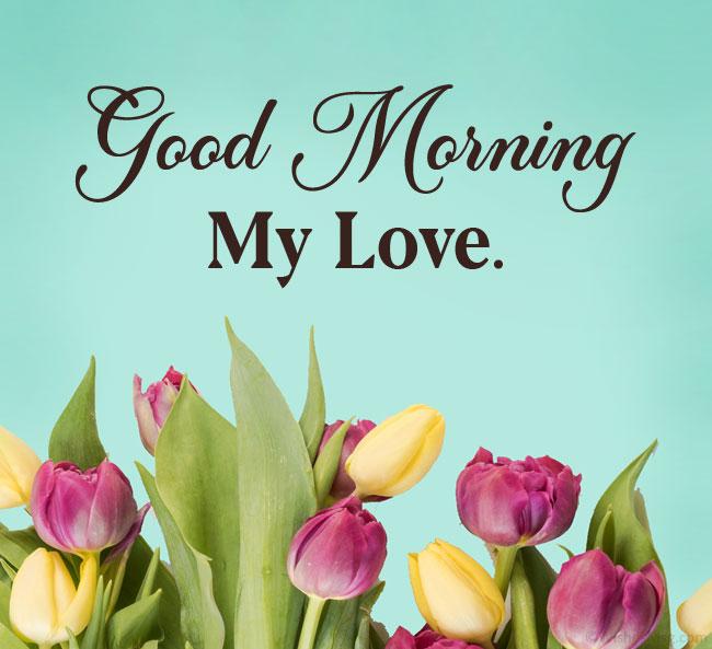 messaggio del buongiorno